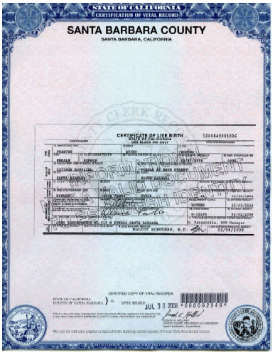 Criminal Records In Michigan Search People Free With Social Security Birth Certificates